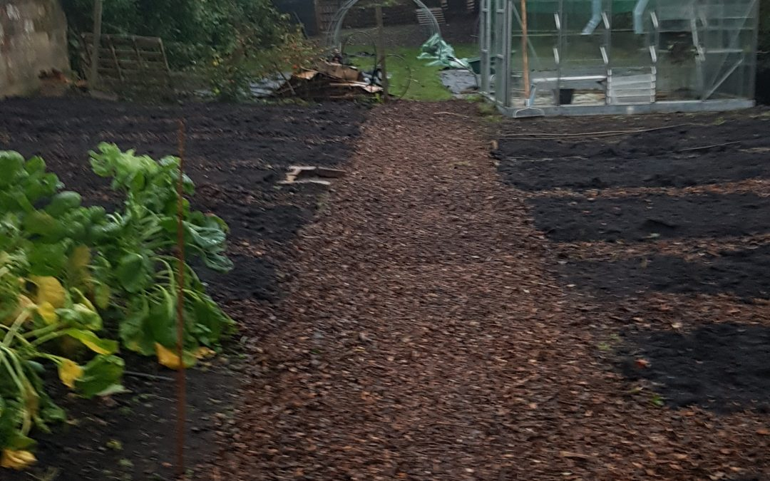 Community Garden transformation this week….