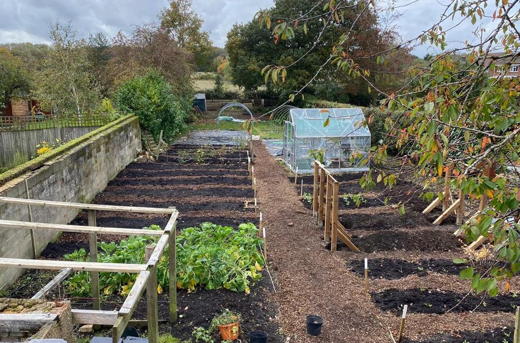 The Community Garden Project