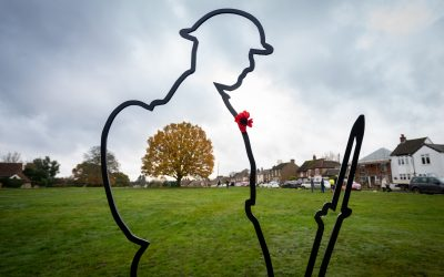 Armistice Day remembering them….